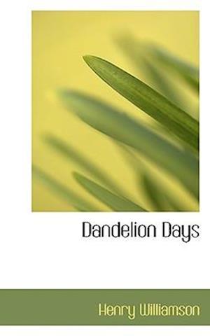 Dandelion Days