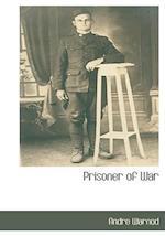 Prisoner of War af Andre Warnod