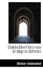 Steinkohlenflora Von Kralup in Bohmen af Ottokar Feistmantel