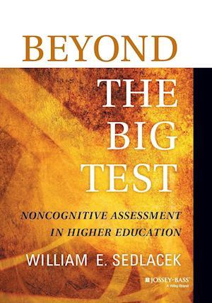 Beyond the Big Test