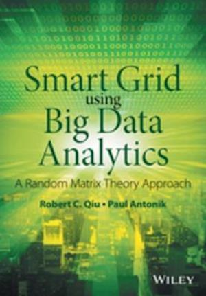 Smart Grid using Big Data Analytics af Robert C. Qiu, Paul Antonik