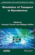 Simulation of Transport in Nanodevices