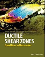 Ductile Shear Zones af Soumyajit Mukherjee