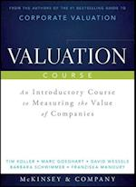 Valuation Course (Wiley Finance)