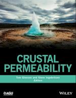 Crustal Permeability (Wiley Works)