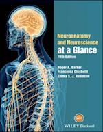 Neuroanatomy and Neuroscience at a Glance (At a Glance)
