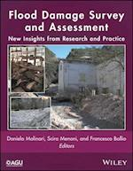 Flood Damage Survey and Assessment (Geophysical Monograph Series)