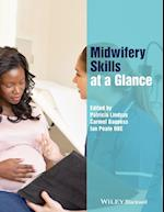 Midwifery Skills at a Glance (At a Glance Nursing and Healthcare)