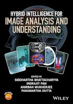 Hybrid Intelligence for Image Analysis and Understanding