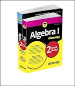 Algebra I for Dummies (For Dummies (Math & Science))