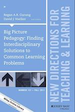 Big Picture Pedagogy (J-B Tl Single Issue Teaching and Learning)