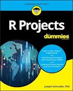 R Projects for Dummies (For Dummies (Computer/Tech))