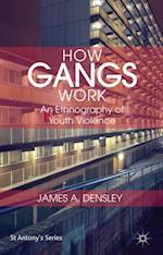 How Gangs Work af James Densley