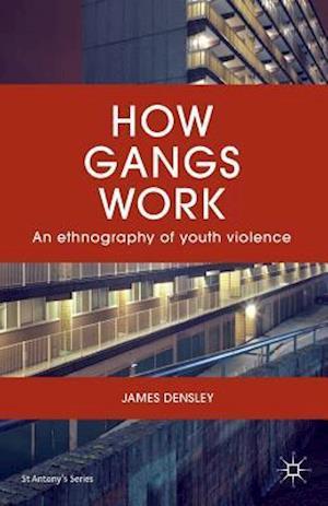 Bog, paperback How Gangs Work af James Densley