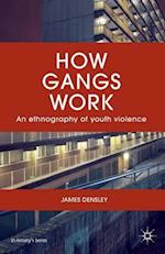 How Gangs Work (St Antony's Series)