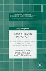 Data Thieves in Action (Palgrave Studies in Cybercrime and Cybersecurity)