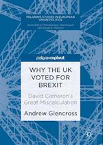 Why the UK Voted for Brexit (Palgrave Studies in European Union Politics)
