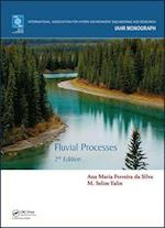 Fluvial Processes (IAHR Monograph S)