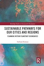 Sustainable Pathways for our Cities and Regions (Routledge Studies in Sustainable Development)