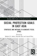 Social Protection Goals in East Asia (Routledge-Eria Studies in Development Economics)