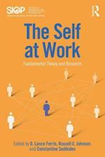 The Self at Work (Siop Organizational Frontiers Series)