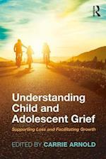 Understanding Child and Adolescent Grief (The Series in Death, Dying, and Bereavement)