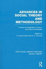 Advances in Social Theory and Methodology af Karin Knorr Cetina