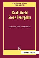 Real World Scene Perception