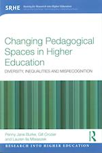 Changing Pedagogical Spaces in Higher Education (Research into Higher Education)