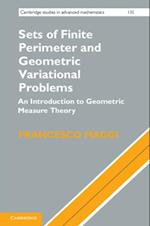 Sets of Finite Perimeter and Geometric Variational Problems (CAMBRIDGE STUDIES IN ADVANCED MATHEMATICS)