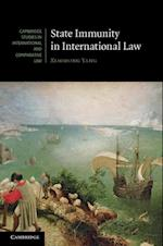 State Immunity in International Law (Cambridge Studies in International And Comparative Law)