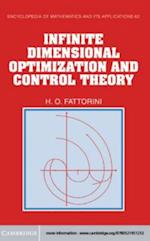 Infinite Dimensional Optimization and Control Theory (ENCYCLOPEDIA OF MATHEMATICS AND ITS APPLICATIONS)