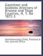 Gazetteer and Business Directory of Broome and Tioga Counties, N. Y. for 1872-3 af Hamilton Child
