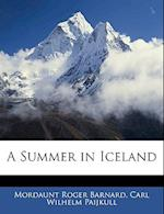A Summer in Iceland af Carl Wilhelm Paijkull, Mordaunt Roger Barnard