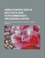 Abbildungen Der in Deutschland Vorkommenden Orchideen-Arten