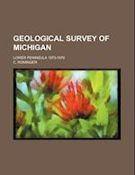 Geological Survey of Michigan; Lower Peninsula 1873-1876 af C. Rominger