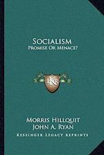 Socialism af Morris Hillquit, John A. Ryan