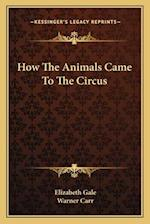 How the Animals Came to the Circus af Elizabeth Gale