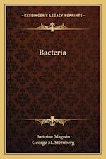 Bacteria af Antoine Magnin, George M. Sternberg