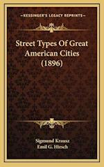 Street Types of Great American Cities (1896) af Sigmund Krausz