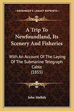 A Trip to Newfoundland, Its Scenery and Fisheries af John Mullaly