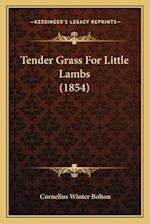 Tender Grass for Little Lambs (1854) af Cornelius Winter Bolton