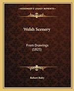 Welsh Scenery af Robert Batty