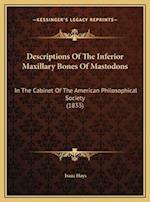 Descriptions of the Inferior Maxillary Bones of Mastodons af Isaac Hays