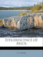 Efflorescence of Brick af J. C. Jones