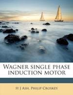 Wagner Single Phase Induction Motor