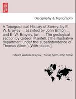 A Topographical History of Surrey af John Britton, Thomas Allom, Edward Wedlake Brayley