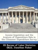 Income Imputation and the Analysis of Expenditure Data in the Consumer Expenditure Survey af Jonathan Fisher