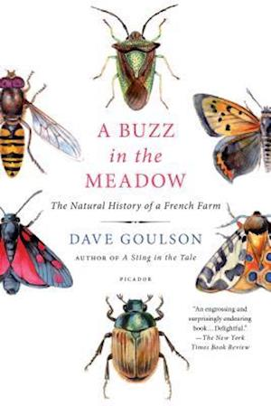 Bog, paperback A Buzz in the Meadow af Dave Goulson