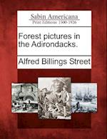 Forest Pictures in the Adirondacks. af Alfred Billings Street